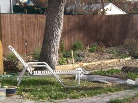 backyard2day