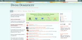 Divine Domesticity Social Network