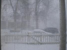 Snowy Day1